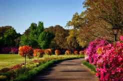 Landscape Parks & Gardens